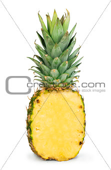 Sliced pineapple white isolated
