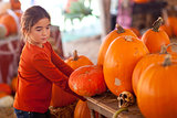Cute Girl Choosing A Pumpkin