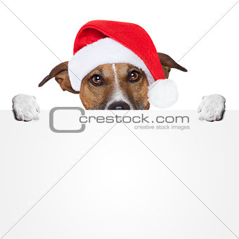christmas banner placeholder dog