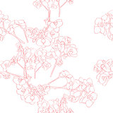orchids pattern