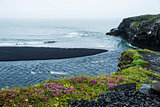 Black volcanic sand on the south coast of Iceland