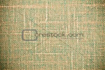 Green Grunge Textile Canvas Background