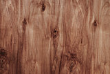 pine brown plywood texture