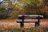 Wooden bench in an autumn forest
