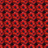 Seamless pattern with watercolor poppies