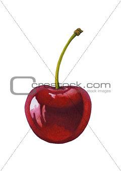Watercolor cherry