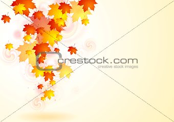 Elegant vector autumn background