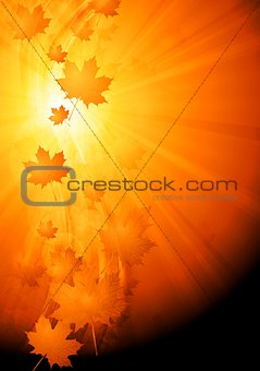 Bright autumn wavy backdrop