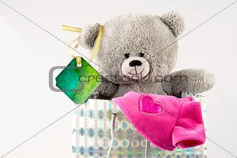 Bear in bag