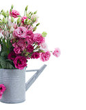 Pink eustoma flowers bouquet  in watering can