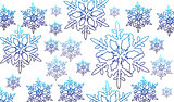 Vector snow flake
