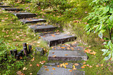 Asian Garden Granite Stone Steps