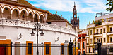 Bull Fight Ring Stadium Cityscape Giralda Spire Bell Tower, Sevi