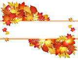 Autumn banner with red leaves.