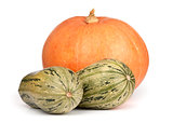 Pumpkin and Squash isolated on white background