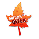autumn offer in 3d leaf