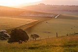 Summer sunrise over English countryside rural landscape