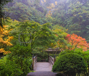 Foggy Morning in Japanese Garden