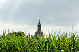 Abbey church in the cornfield