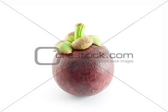 single mangosteen