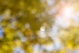 Yellow Blurred Background with Lens Flare