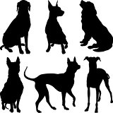 vector silhouettes of dogs in various poses