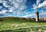 Iowa Farmland - Green Pasture