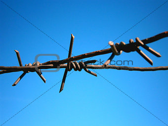 Background barbed wire on a background of blue sky