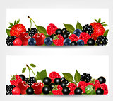 Two banners with delicious ripe berries. Vector.
