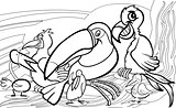 exotic birds group coloring page