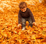 Cute child in fall forest