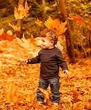 Adorable child in autumn woods