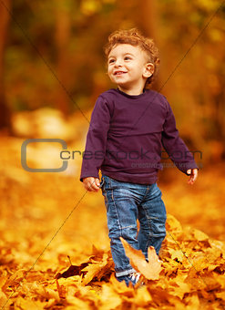 Lovely boy in autumnal woods