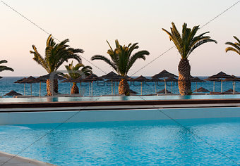 Palms near water of sea or ocean photo