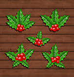 Christmas set holly berry branches on wooden background