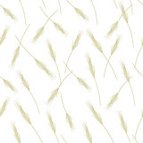 Wheat seamless pattern for your design
