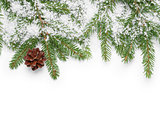 border from fir twigs, cone and fake snow