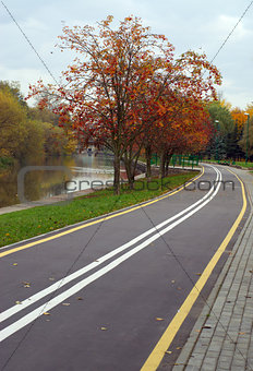 Autumn cityscape with rowan and bicycle path