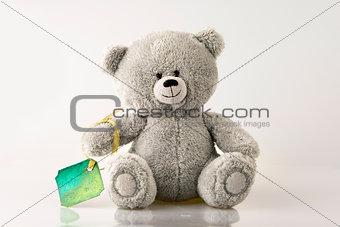 Bear with card