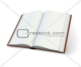 Blank pages of open books spread