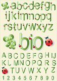 Bio Alphabet