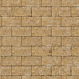 Seamless Tileable Texture of Coquina Wall.