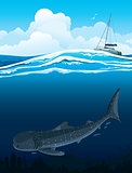 Whale shark and boat
