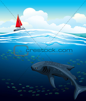 Yacht and big whale shark.