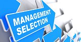 Management Selection. Business Background.