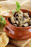mushroom ragout of champignons