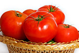 Many tomatoes in a straw basket