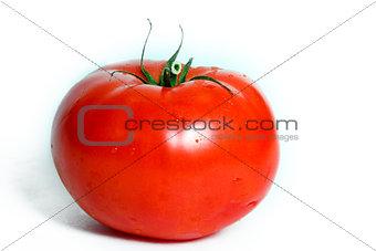 One tomato on a white background