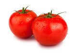 Pair of red ripe tomatoes
