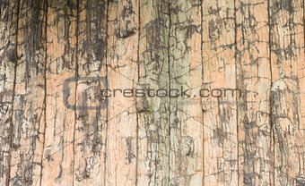A grunge wooden wall with vignetting and texture